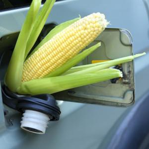Ethanol mandates ignore reality