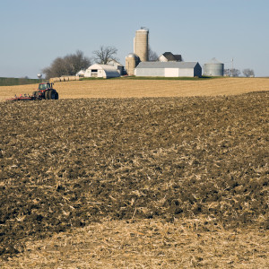 $20 Billion In Farm Subsidies Doesn't Reach the Poor, Leaves Them Hungry