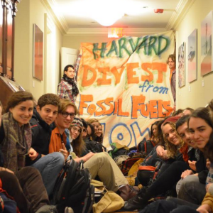 To Divest or Not to Divest—That is the Question