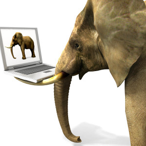 Opinion: Broadband Internet's Elephant in the Room
