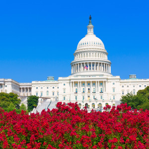 House Passes USA Freedom Act, Spikes NSA Reform to the Senate