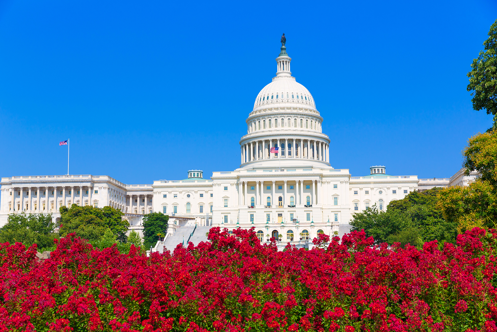 House passes usa freedom act for Building a house in washington state