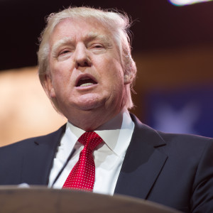 Will Liberals Like Trump's Tax Plan?