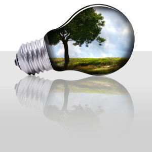 With the Growth of Energy Saving Appliances, Why Aren't Electric Bills Lower?