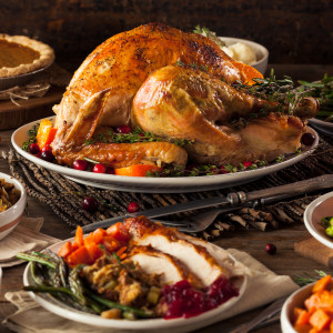 Virus Will Harm Thanksgiving and Christmas as the Crisis Worsens