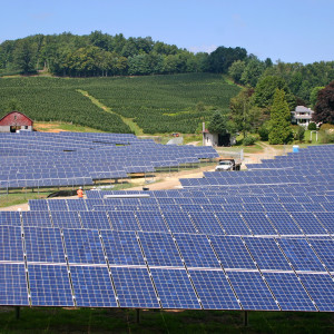 Mixed Signals for U.S. Solar Industry