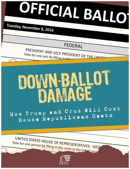 down ballot dems report
