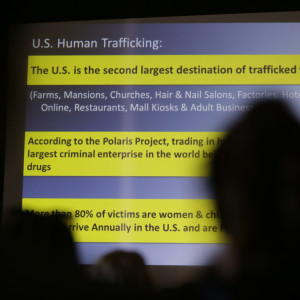 Senate Holds CEO of Sex Trafficking Website in Contempt