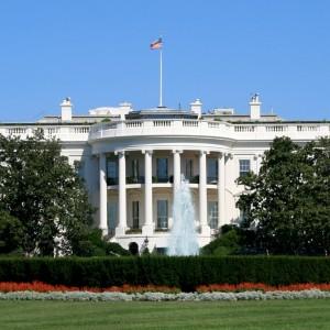 Cartelizing World Markets While Draining the Washington Swamp