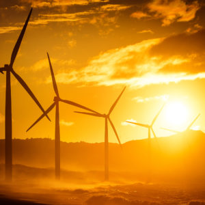 Why Is the FTC Taking a New Look at Renewable Energy Credits?