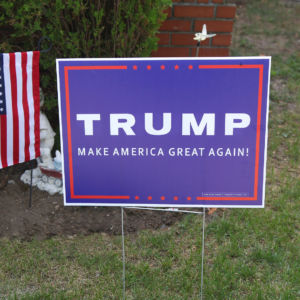 Do Lawn Signs Make a Difference in Political Campaigns?