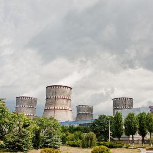 The Cruel Market — Nuclear Pain and Environmental Loss