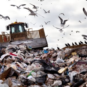 Congress Refutes EPA on Puerto Rico Landfill Crisis