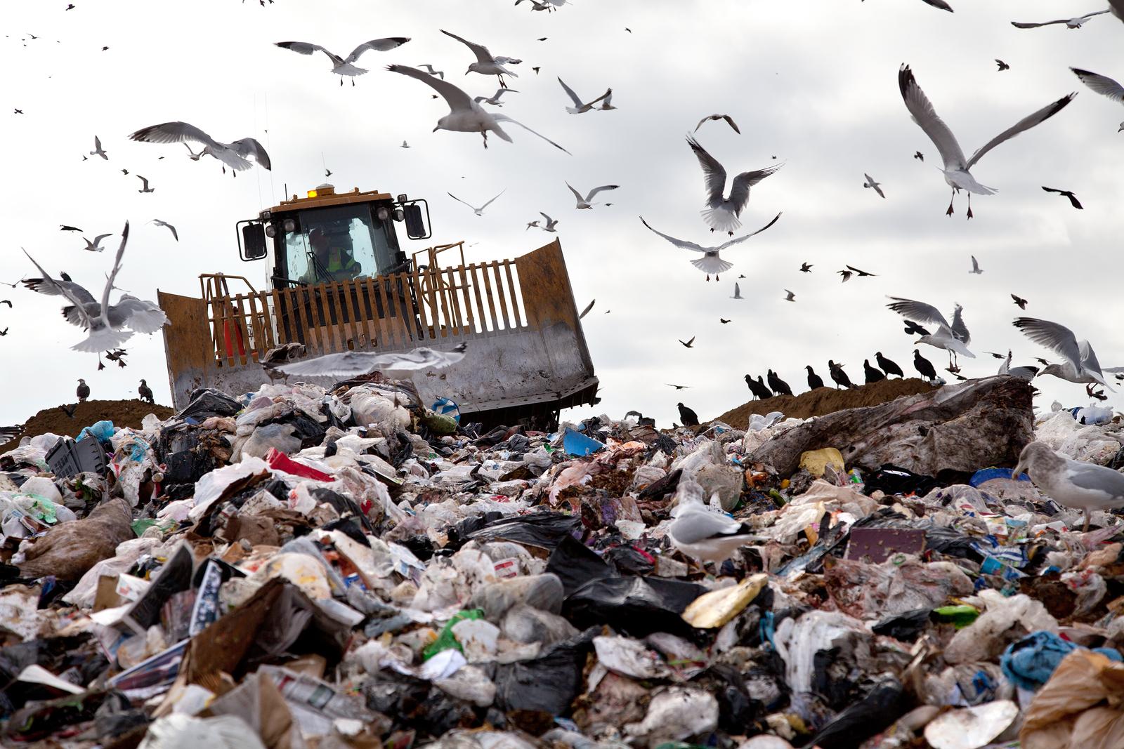 bigstock-Landfill-With-Birds-57624611.jpg