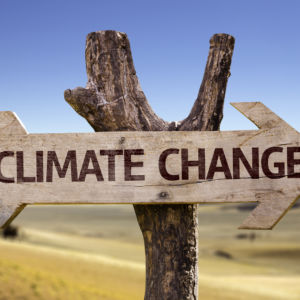 Market-Oriented Solutions to Climate Change