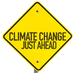 Joe Biden Needs a Climate Crisis