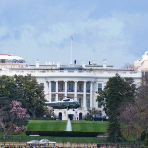 Trump's Washington — a Government of Strangers
