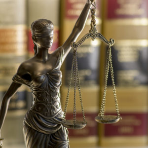 Discount Justice — Fiscal Austerity and State Courts