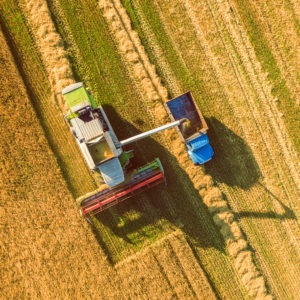 Point: More Farm Subsidies Won't Help the Rural Economy