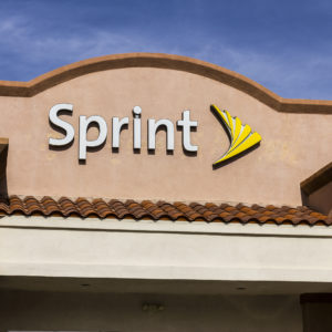 Sprint, Windstream Sue FCC Over Business Internet Deregulation