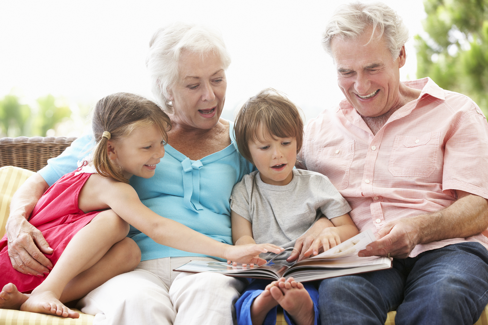Grandfamilies in New Hampshire and What They Have to Do ...