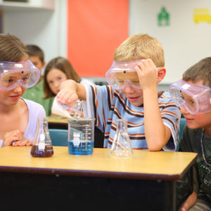 How Science Standards Went Mainstream Without Common Core's Drama