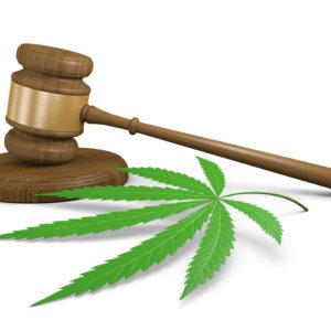 Senate Subcommittee Recommends Passage of Marijuana Sentencing Bill