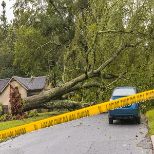 Eversource Updates Granite Staters on Efforts to Restore Power to 'Connecticut' After Storm