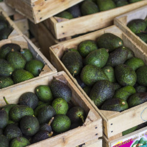 Why Millennial Avocado Lovers Should Care About Trade