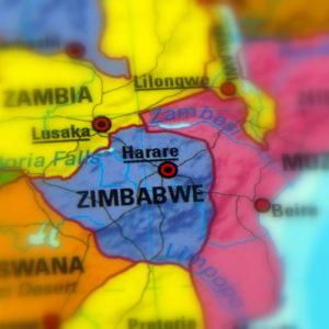 Zimbabwe's Coconut Coup Installs a Crocodile Liberator