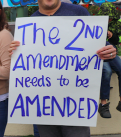 "NH Dem: Repealing Second Amendment ""A Good Discussion To Have"""
