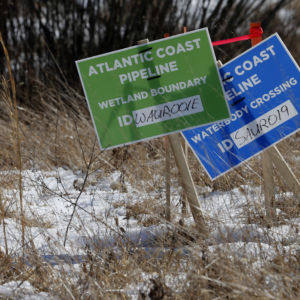 State-Level Permitting Uncertainties Delay Pipeline Construction in LA, NY, and VA