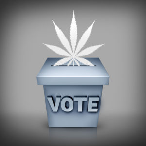 Americans This November Will Show Their Support for Marijuana Legalization