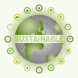 Time to Replace the Word 'Sustainable'