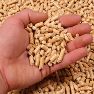 Mississippi Approves Permit for New Wood Pellet Manufacturing Plant as Debate Continues Between Activists and Company