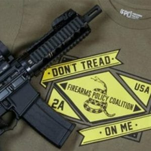 New Mexico Conservatives File Lawsuit Against Gun Laws, Lack of Public Referendums