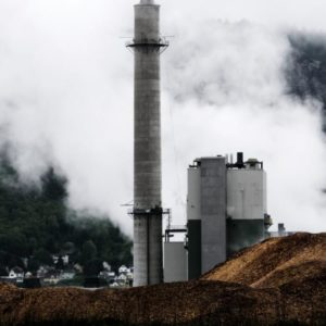 Biomass Emits More Carbon Than Coal. So Why Do N.H. Dems Love It?