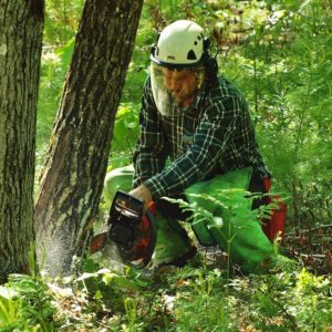 Lawyers, Launderers and Lumberjacks: Meet New Hampshire's 'Essential' Workers