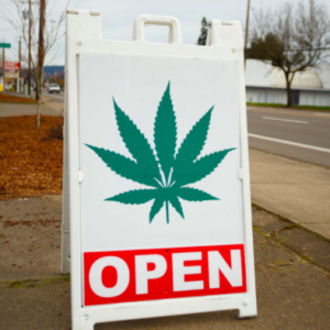 Plumbers, Pawnbrokers and Pot: Meet America's 'Essential' Workers