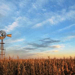 The Coronavirus May Accelerate the Demise of Rural America