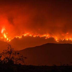 The Real Wildfire Story Isn't the Climate Tale You've Been Told