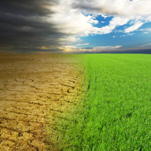 To Cure Climate Ills, Don't Starve Economies — Feed Innovation