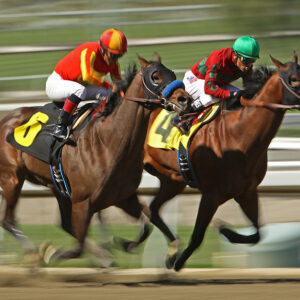 """A Failed Drug Test Will """"Stirrup"""" Trouble for Horseracing"""