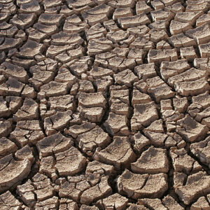 Tricky Recovery as Western Drought Looms Over Summer